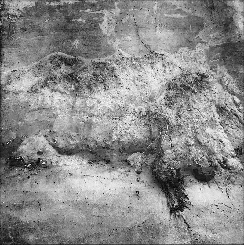Collapsing Dune #6