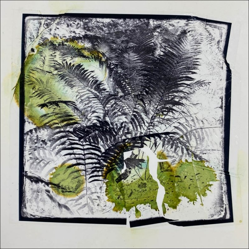 Canon Selphy emulsion lift with alcohol inks