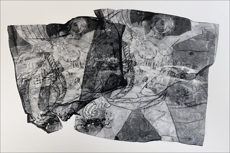 Siena _overlapping SuperSauce emulsion lifts