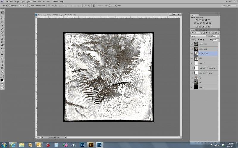 03 screen print negative dass